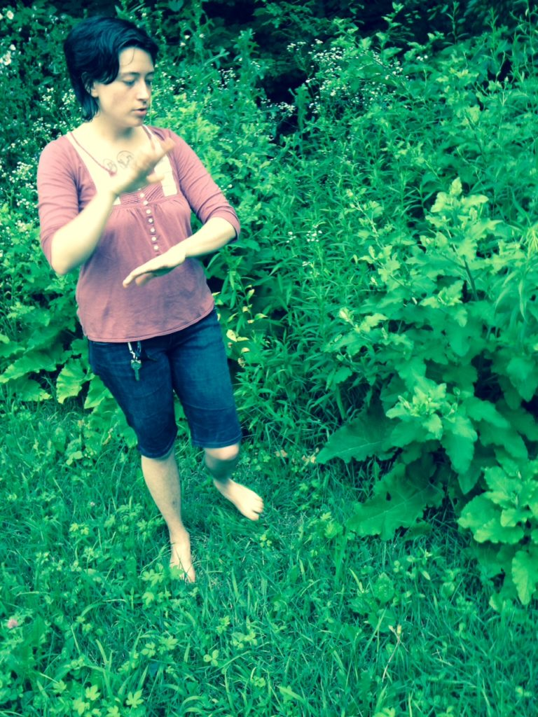Teaching about Articum lappa at a Jamaica Plain herb walk