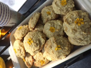 Chamomile cookies keep kids calm
